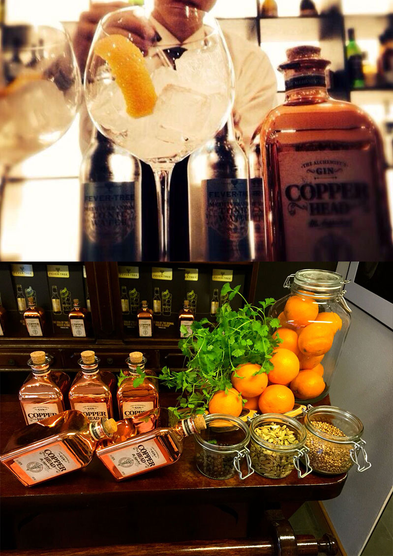 PREMIUM IMPORTERS SPAIN | COPPERHEAD GIN